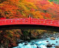 明日10/29(土)は、7時半に狭山PAに集合‼ 2016/10/28 19:17:50