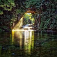 SAFTY PAL の輪を広げようの部~滝シリーズ 千葉県濃溝の滝~ 2016/10/25 08:34:59