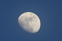 「月齢」と「旧暦による月の呼び名」がズレるワケ 2017/02/07 22:24:00