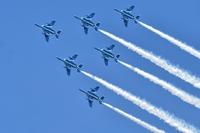 八王子上空にブルーインパルスが!「緑化フェア」「フードフェスティバル」9/16開幕、たまりば会員さんも登場