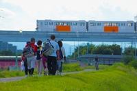 「多摩の横山」を歩いて学ぼう、多摩市・秋の遊歩道ガイドウォークの締切迫る(10月10日まで)