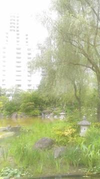 初夏にスピリチュアルなお散歩会行って参りました