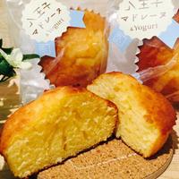 【季節限定】ヨーグルトマドレーヌ&パイサブレ