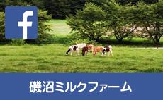 磯沼ミルクファームfacebookページ
