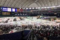 本日より「第17回東京国際キルトフェスティバル2018」スタート