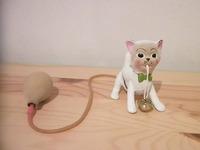 謎の猫オヤジ2