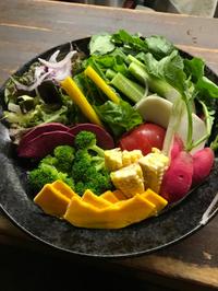 八王子野菜採り直サラダ 2017/09/07 01:10:00