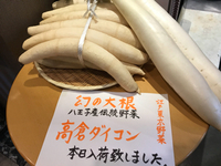 八王子の伝統野菜「高倉ダイコン」入荷しました! 2017/12/17 16:19:00