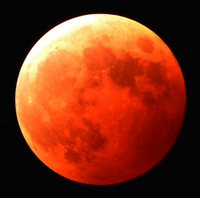 赤いブルームン&皆既月食の獅子座の満月☆