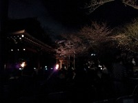 夜桜能~靖国神社奉納(4/2)