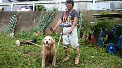 肩掛けの草刈り機で 1時間近くやっていました。