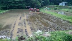 田植えの準備のために トラクターで代掻きしていました。