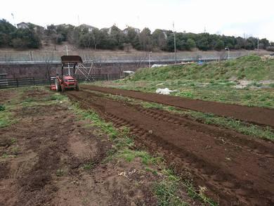 体験農園を今、、準備しています。