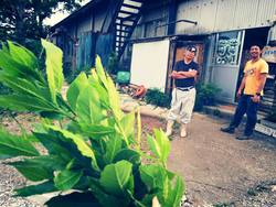 ユギムラ牧場 農業体験農園