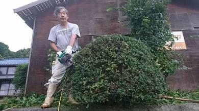 2か月ぶりに庭の手入れ