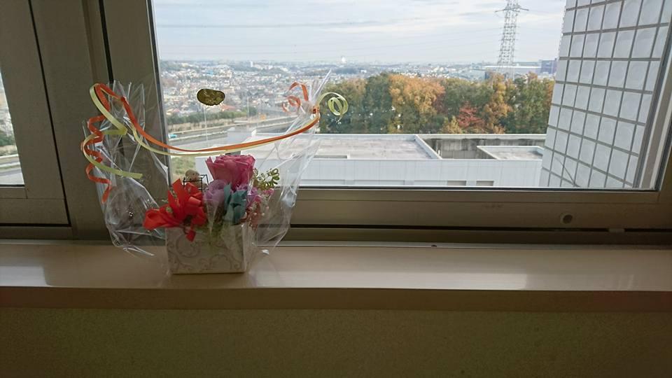 かわいい花をプレゼントしてくれました。