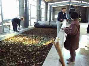 生ごみ堆肥化を堆肥小屋で始めました。