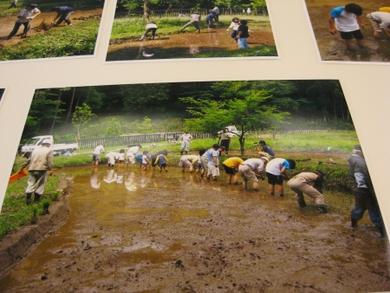 東京都に農業公園構想の町づくりを訴え続けていました。