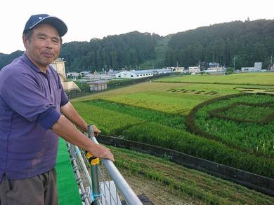 緑化フェア企画の田んぼでアート