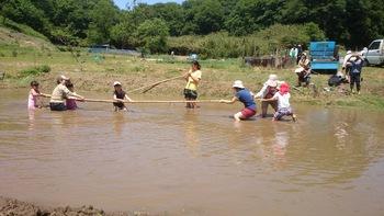 堀之内里山保全地域指定地内で田植え前の泥んこ運動会