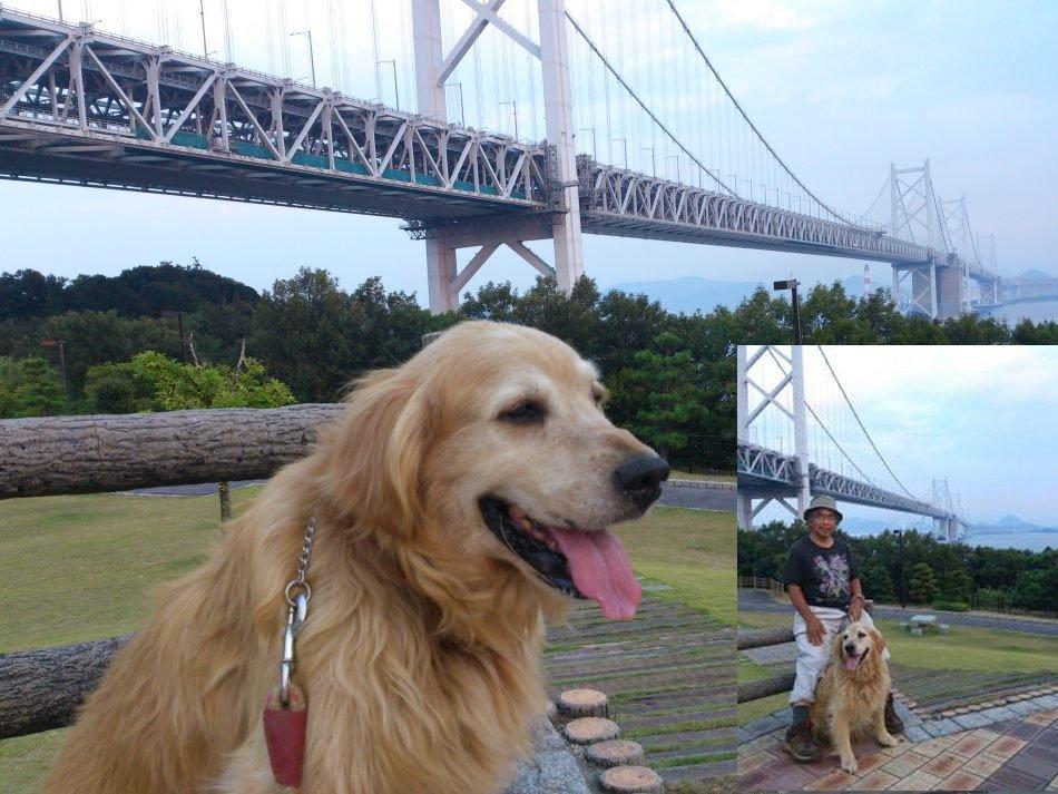 コロ君の日本探訪HPより、瀬戸大橋