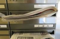 元日の新聞朝刊/トロ「かまってちょうだい始め」