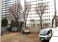調布駅前広場の樹木 初日の伐採・移植作業は中止