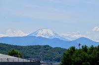 「あたまを雲の上に出し・・・富士は日本一の山❗️ 」