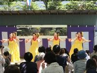 7月のフラダンス無料体験会のお知らせ