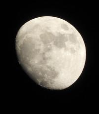 おお、月が撮れたよ 2017/01/09 20:23:19