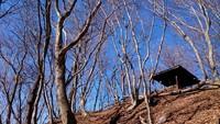 伊豆ヶ岳を歩いてきました。2017年12月。
