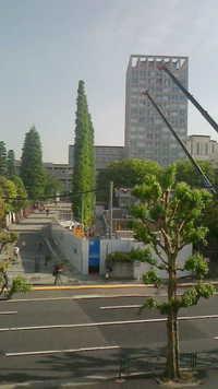 早稲田大学戸山校舎に来ました