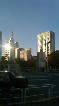東京はいいお天気です