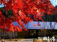 多摩地区のスパ:秋川渓谷 瀬音の湯(あきる野市)
