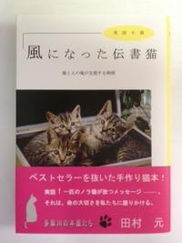 スタッフお勧め本:「風になった伝書猫」