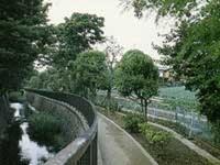 西東京市にある3つの白子川水源