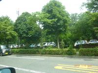 とっとこ7月16日大木島自然公園