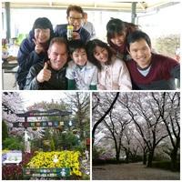 お花見(3) 2015・4・5