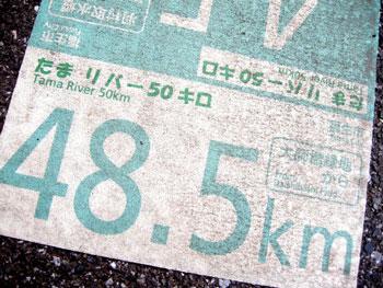 たまリバー50キロ