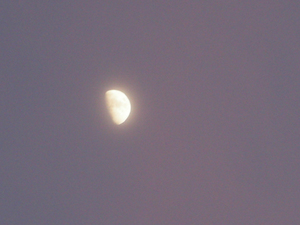 夕焼けに染まった月
