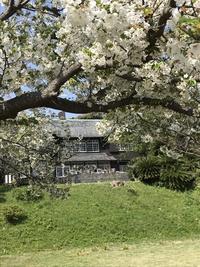 鎌倉 の洋館